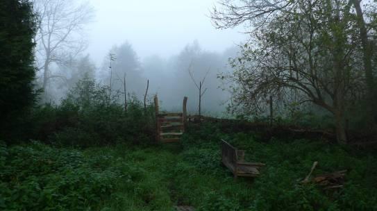 Projekt: Totholzzaun