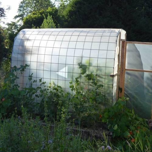 Projekt: Unser selbstgebautes Gewächshaus