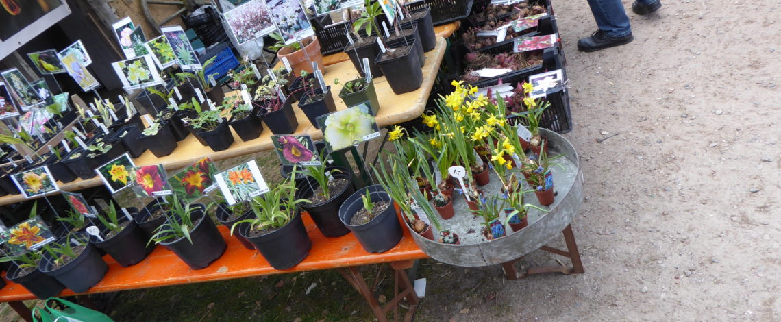 pflanzenmarkt-museum-kiekeberg
