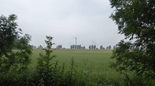 Nachhaltiger Leben – Wie fange ich an?